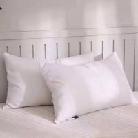 枕芯 枕頭
